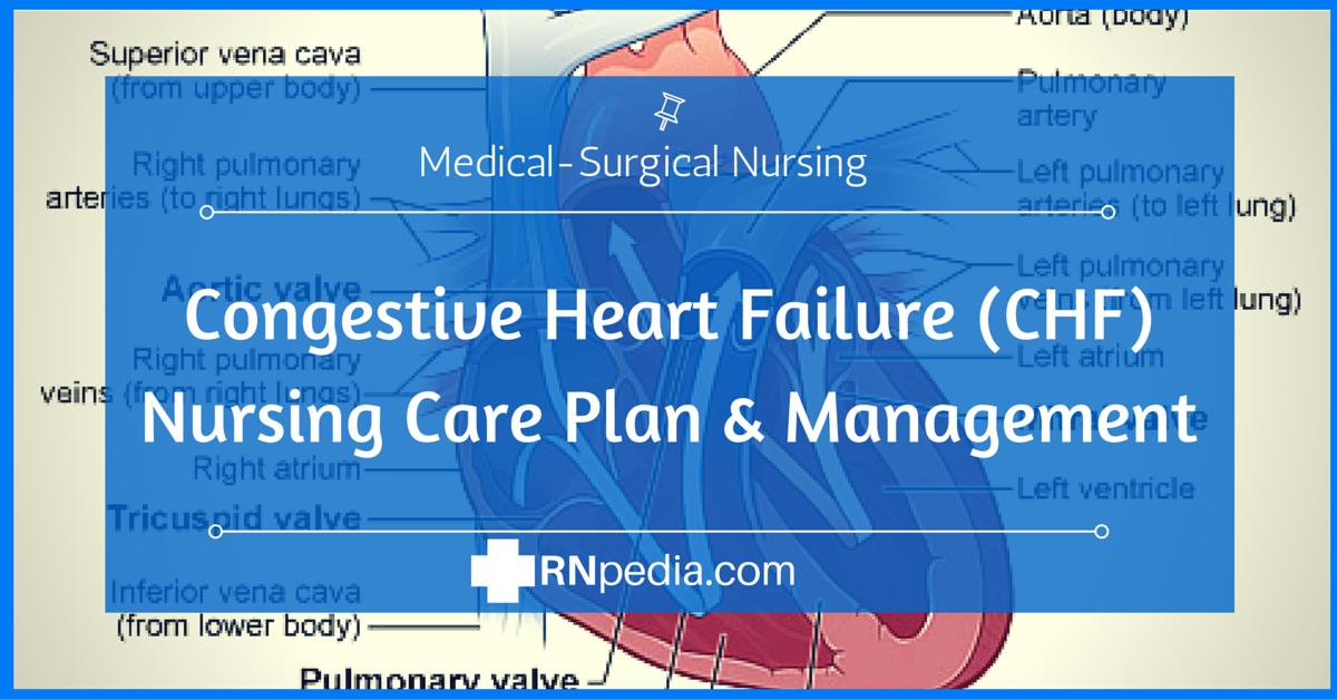 Congestive Heart Failure (CHF) Nursing Care Plan | Nursing ...
