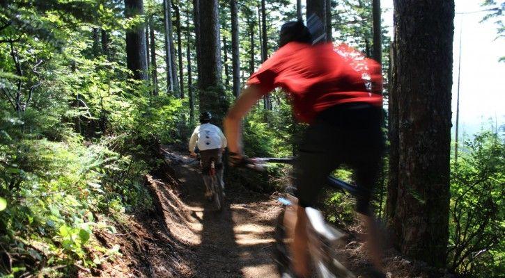 New DNR Tiger Mountain Biking Trail