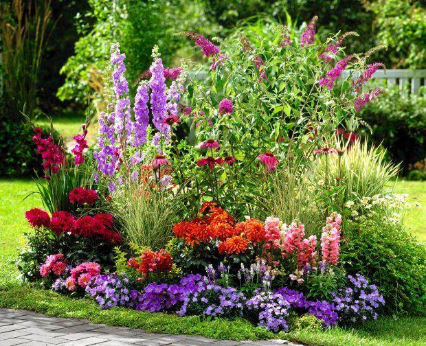 Rabata Z Kwiatow Kwitnacych Latem Rabata O Wyrazistych Kolorach Cottage Garden Beautiful Flowers Garden Beautiful Gardens