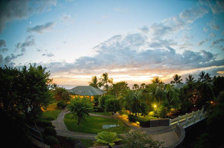 Hotel Wailea | White Orchid Wedding - Hawaii Wedding Planners