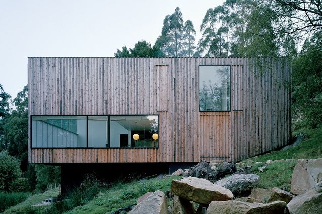 Little Big House |  Fern Tree, Tasmania, Australia  | Room 11