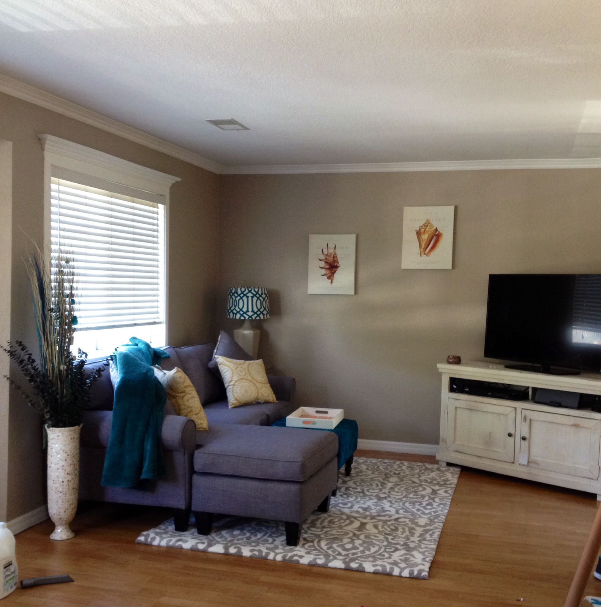 6 Tenacious Simple Ideas Small Living Room Remodel Hall