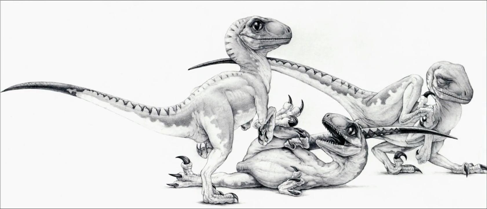 Jurassic Park baby Velociraptors concept drawing   Raptor ...