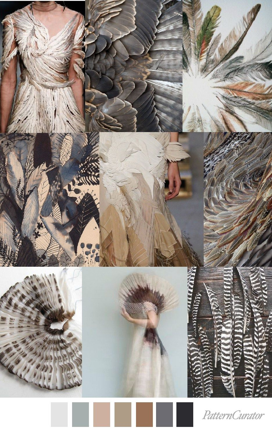 RUFFLE FEATHERS_SITE #collageboard