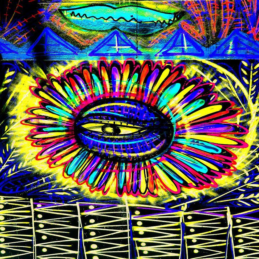 Wall Flower 30x30 Photograph
