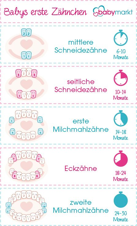 Wann bekommen Babys Zähne? - babymarkt.de Ratgeber | Baby ...