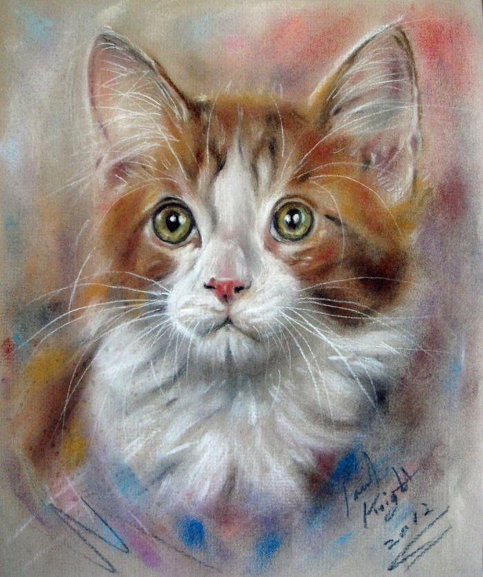Кошки нарисованные картинки художника