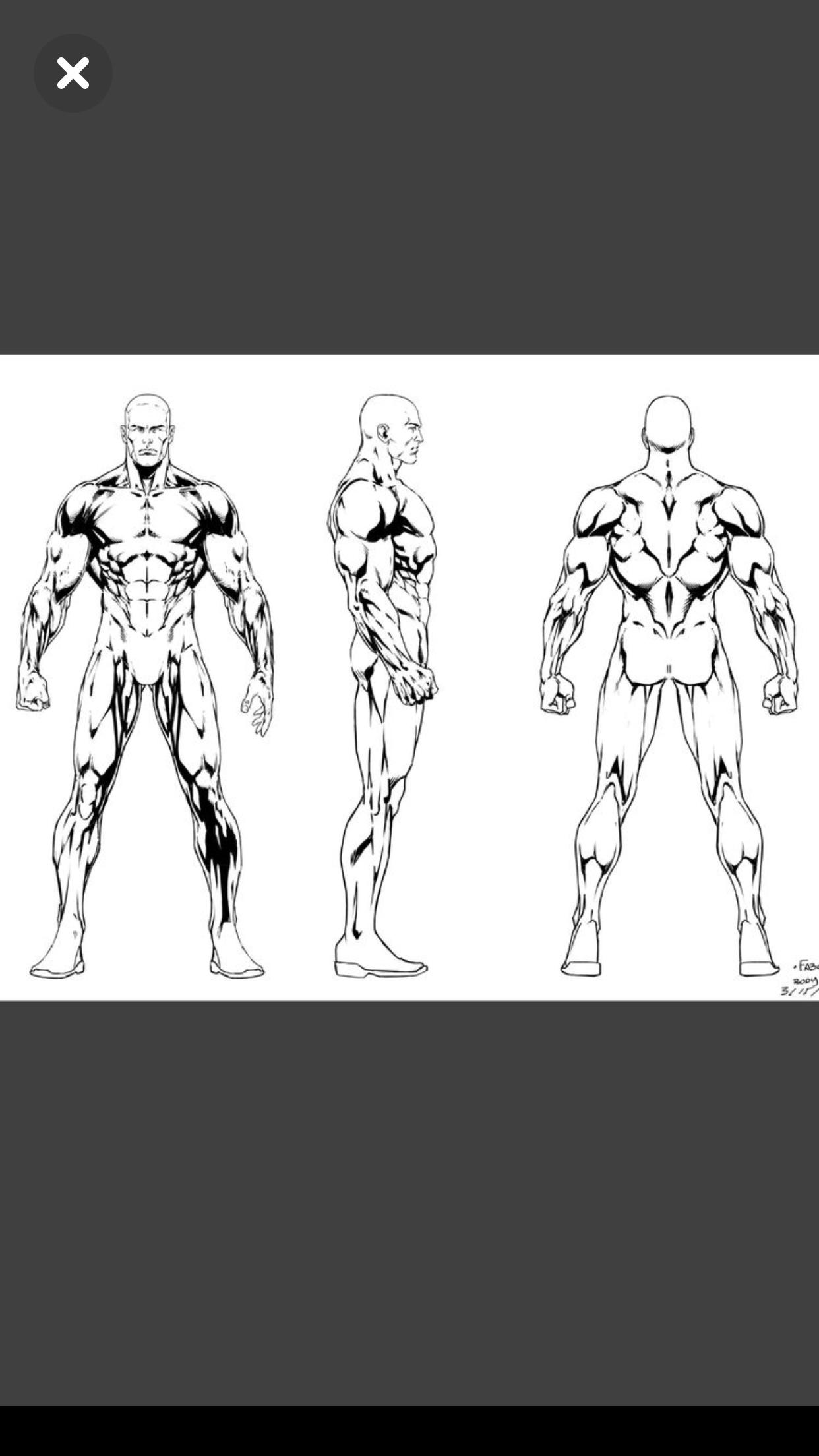 Pin de chaneton plantamur en Anatomy Drawing | Pinterest | Anatomía ...