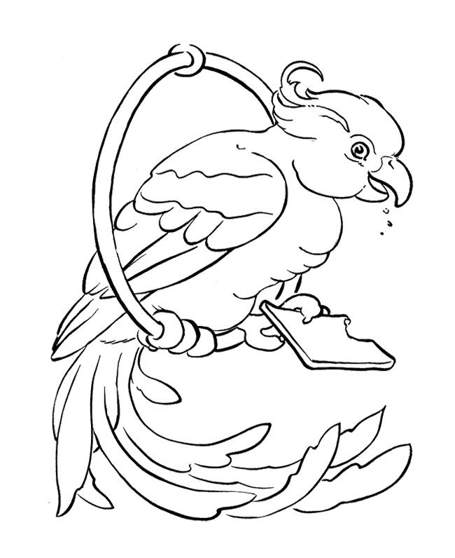 Bird Parrot Coloring Page | Kids Coloring Pages | Pinterest | Bird ...