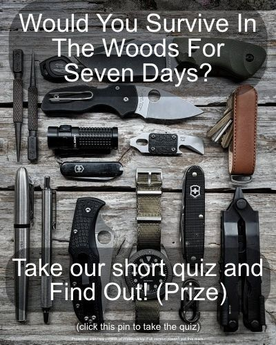 Photo of Would you live in the woods for a week? 🧐 Touch the pin and take our responsi…