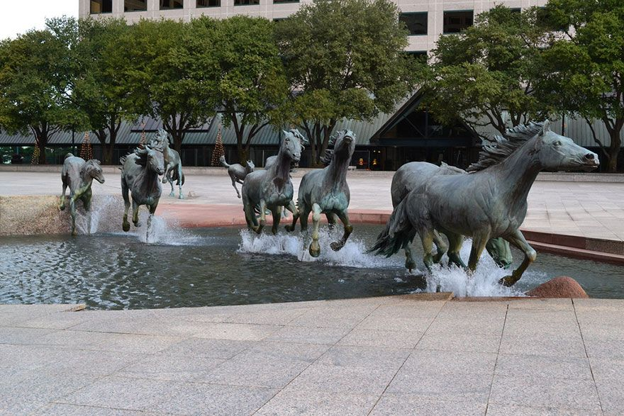 Mustangs at Las Colinas - Texas
