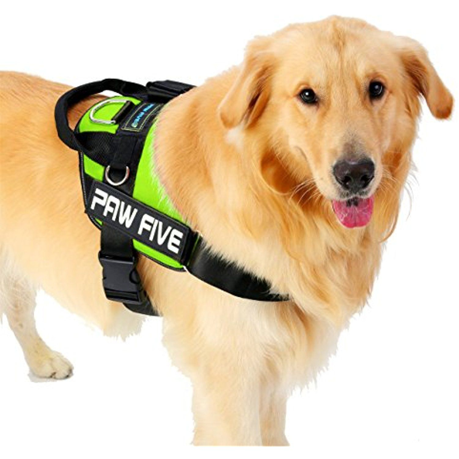 Paw Five Core 1 Reflective Dog Harness With Built In Waste Bag