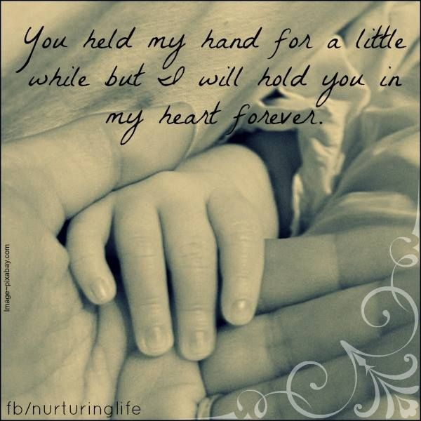 You held my hand for a little while but i will hold you in ...