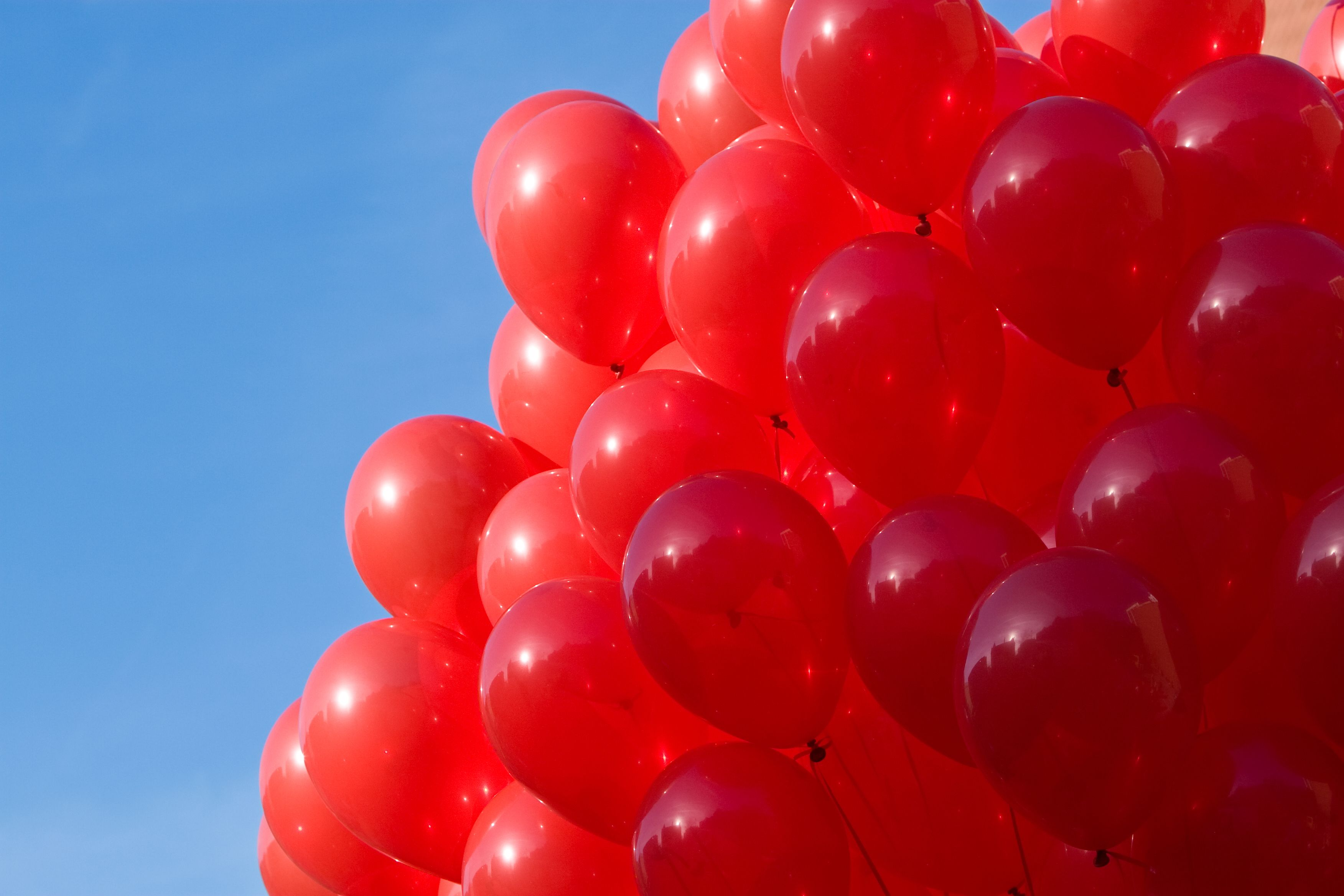 99 Red Balloons Red Balloon Balloons Photo Reference