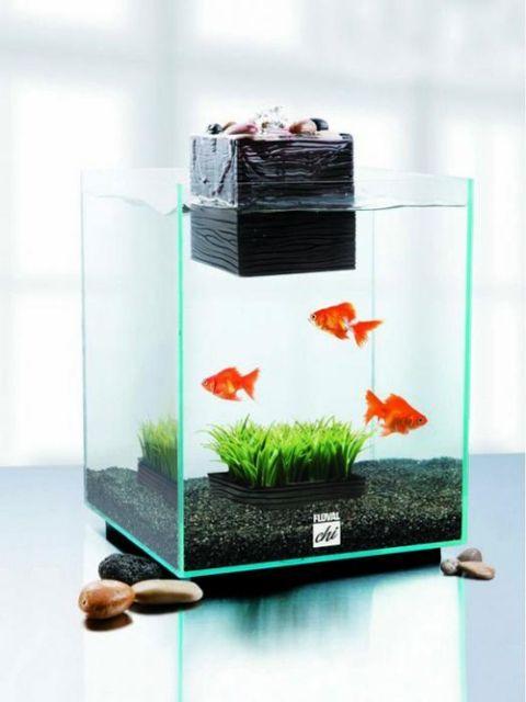 Home small aquarium ideas creative aquarium pinterest for Home fish tanks