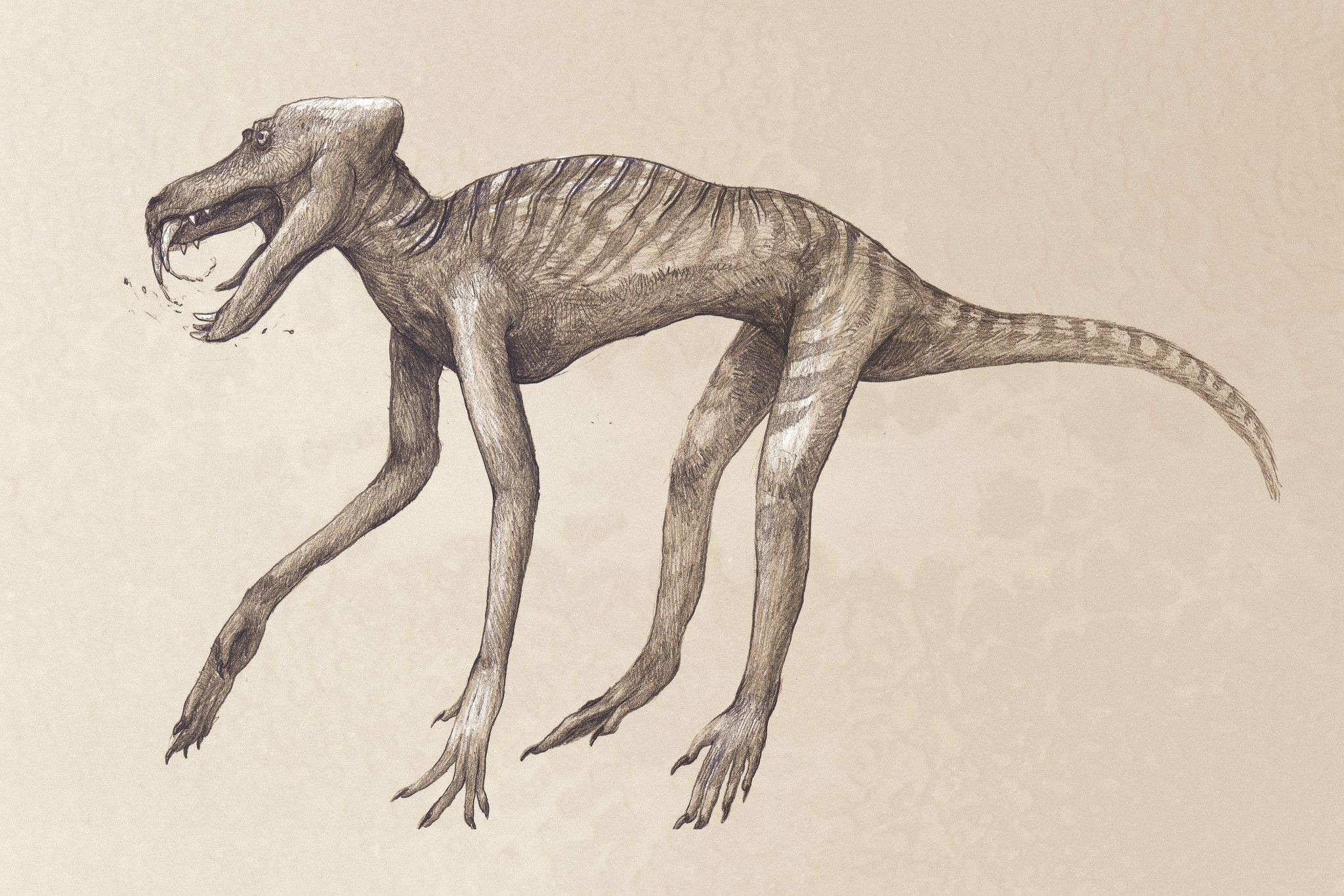 A Book That Will Make You Question Everything You Know About Dinosaurs
