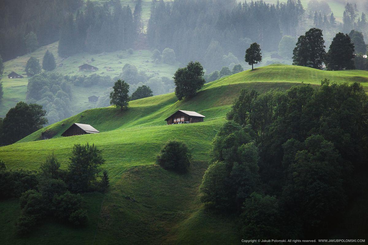 スイス019