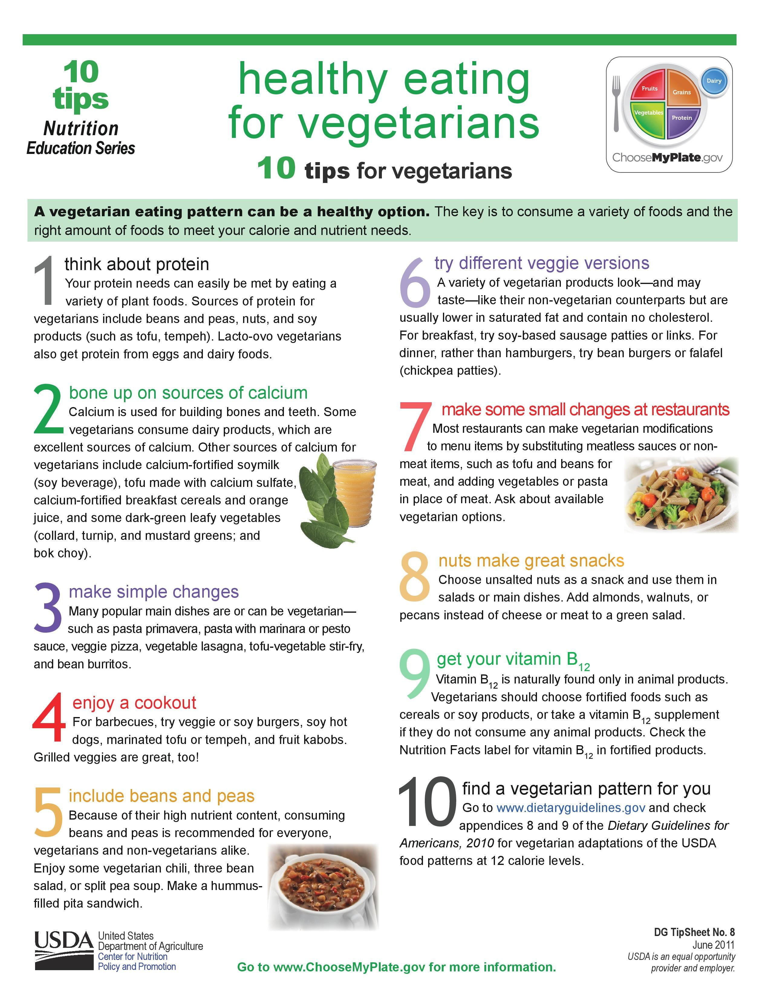 Pin By Food Pyramid On Myplate For Adults