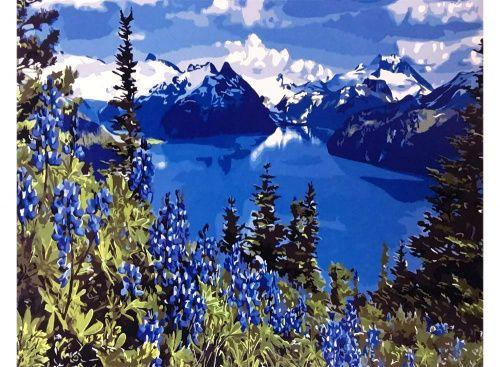 Картина по номерам «Горное озеро» | Пейзажи и природа ...