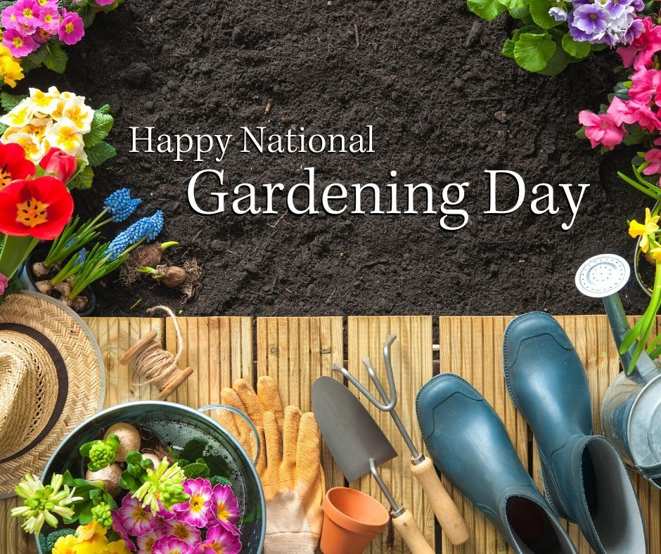 World Naked Gardening Day: tips for celebrating | Play Stuff