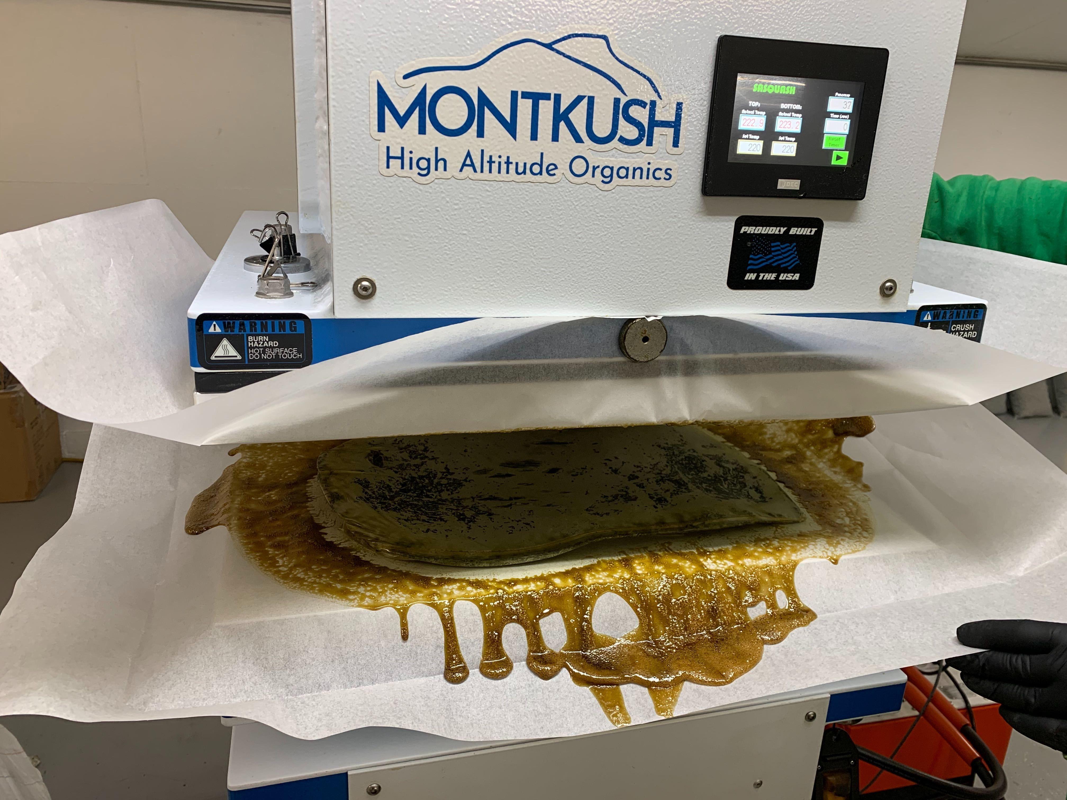 Our process montkush cbd farm in 2020 digestive