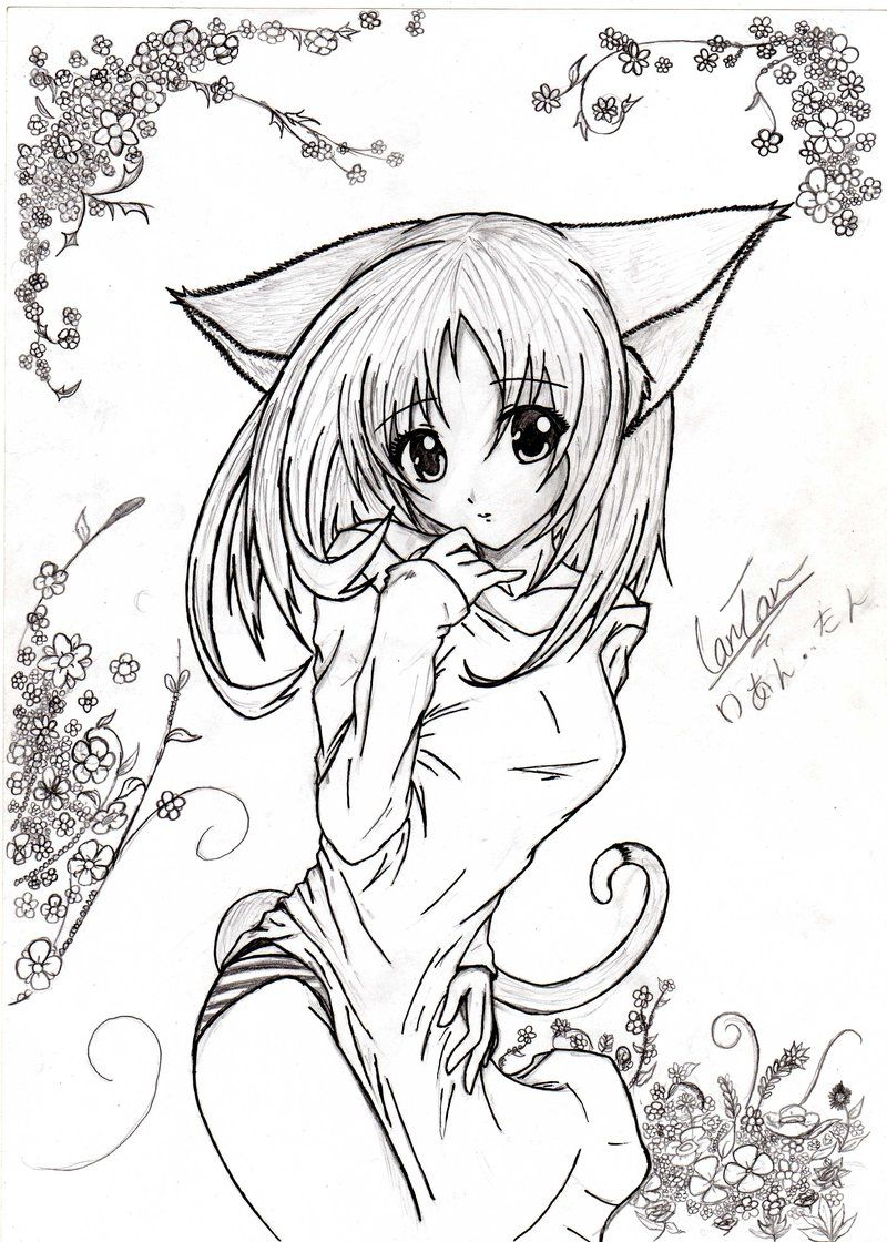 Картинки девушки кошки не аниме рисунок