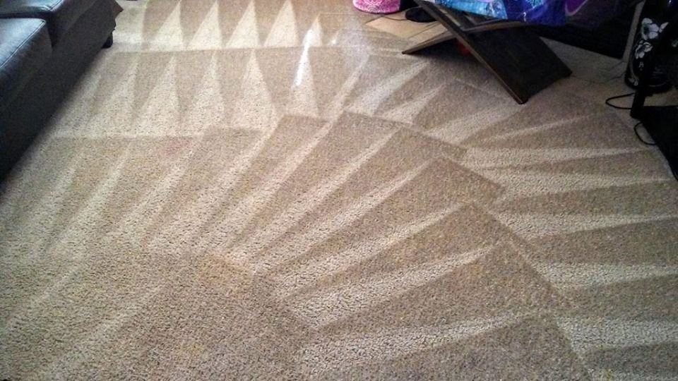 Number 1 choice for dry, Ecofriendly carpet cleaning