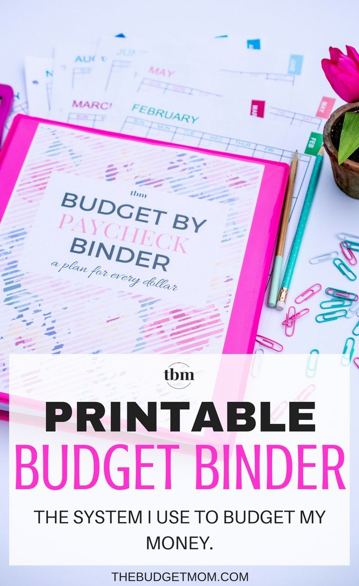 Our 2017 Budget Binder (A Plan for Every Dollar) | Pinterest | Geld ...