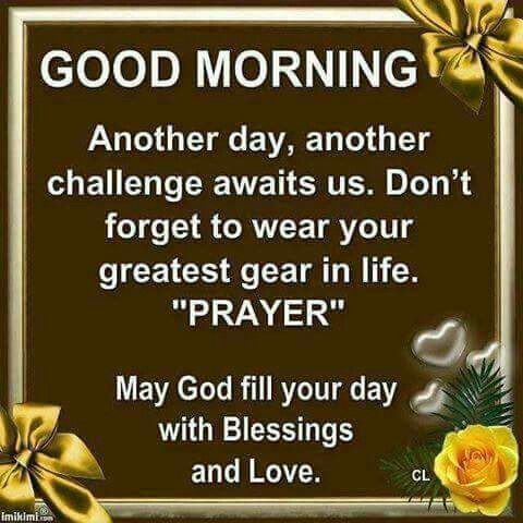 Good morning greetings daily blessing pinterest morning good morning greetings m4hsunfo
