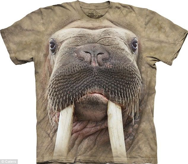 3D Animal T Shirts   Share on Meebal.   Dot Your I's And ...