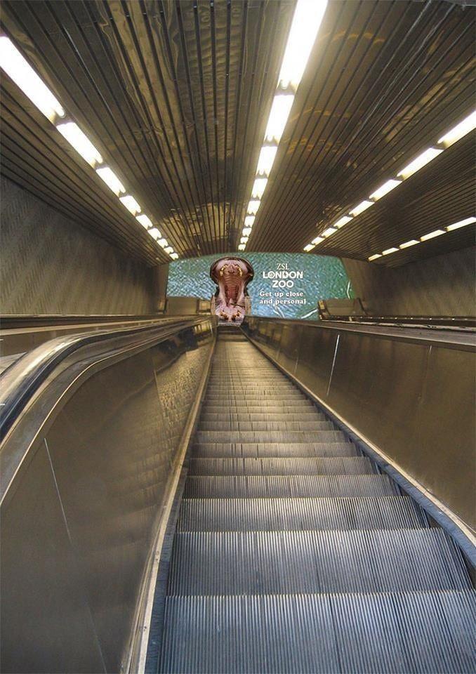 #Zoo #StreetMarketing #blog #publicidad #creativa Visita HomemadeMk