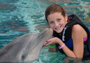 Sea Life Park - Dolphin Encounter