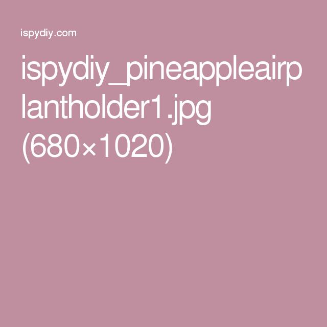 ispydiy_pineappleairplantholder1.jpg (680×1020)