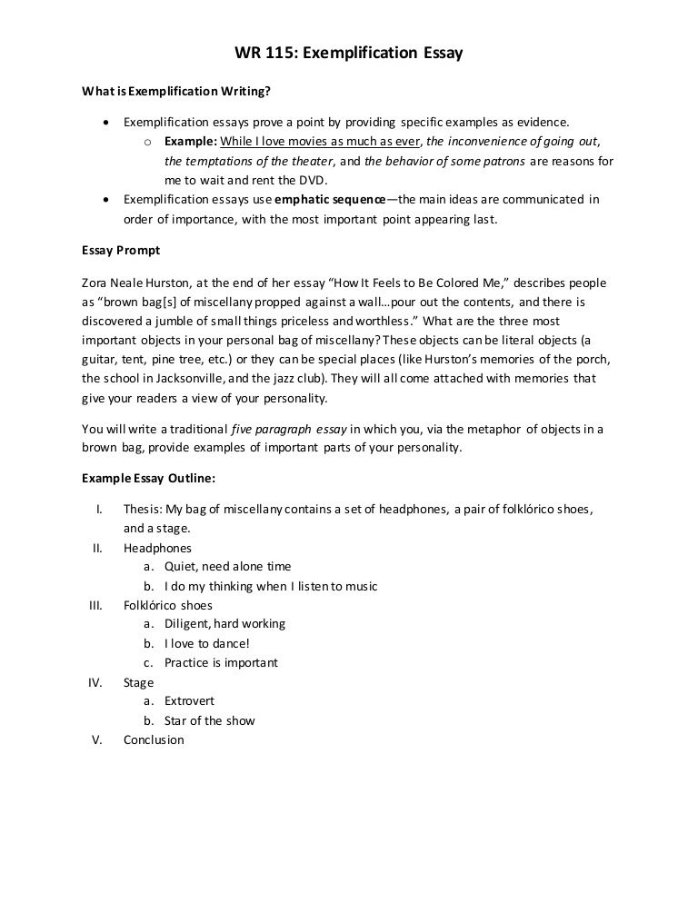 Example Of Exemplification Essay Tip Professional Writing