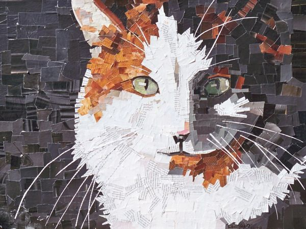 Recycled Magazine art of a cat- Photo and art by Deborah Shapiro