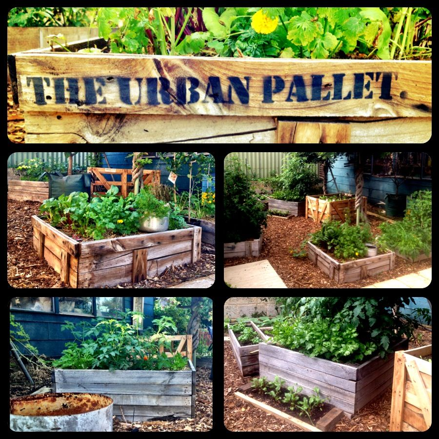 Pallet Wood Raised Garden Bed: Rustic, Pallet, Wooden Crates, Vege Box, Recycled Wood