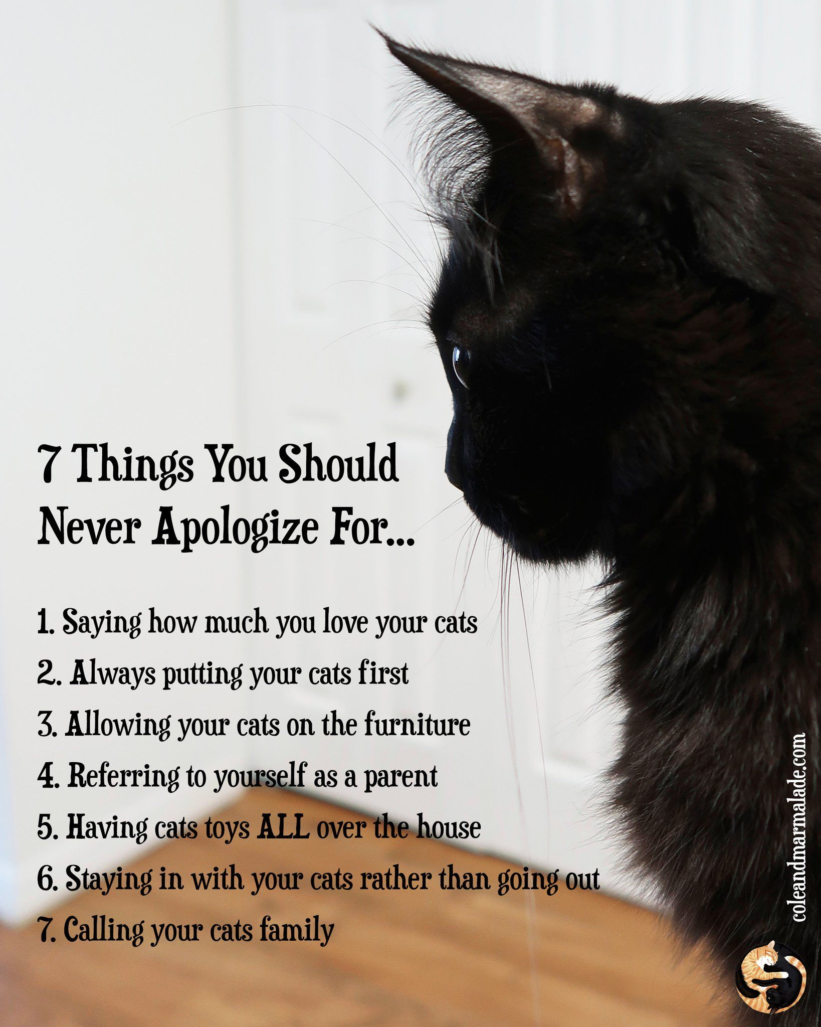 Pin By Mandy Matthews On Kittehs Cats Cat Quotes Crazy Cats