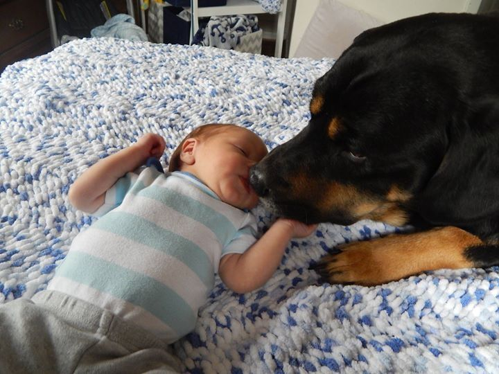A boy and his dog part  1           one week old