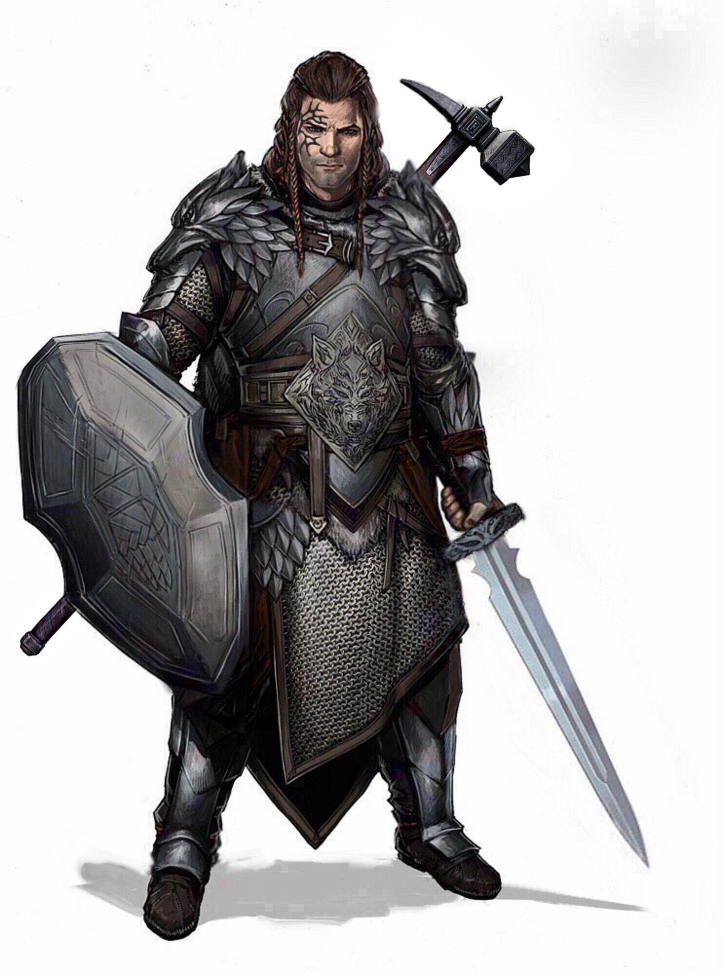 m Paladin Plate Shield Sword War Hammer midlvl | Dungeons and dragons characters, Fantasy ...