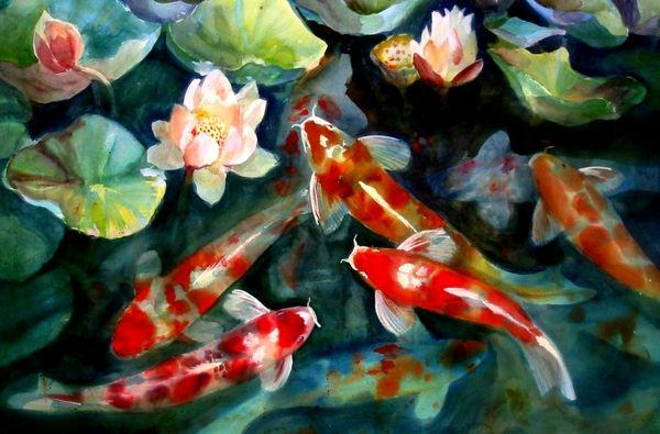 Coy Pond Artwork Water Fish Pond Koi Artwork Lotus Flower 1504x991 Wallpaper Koi Art Koi Fish Japanese Koi