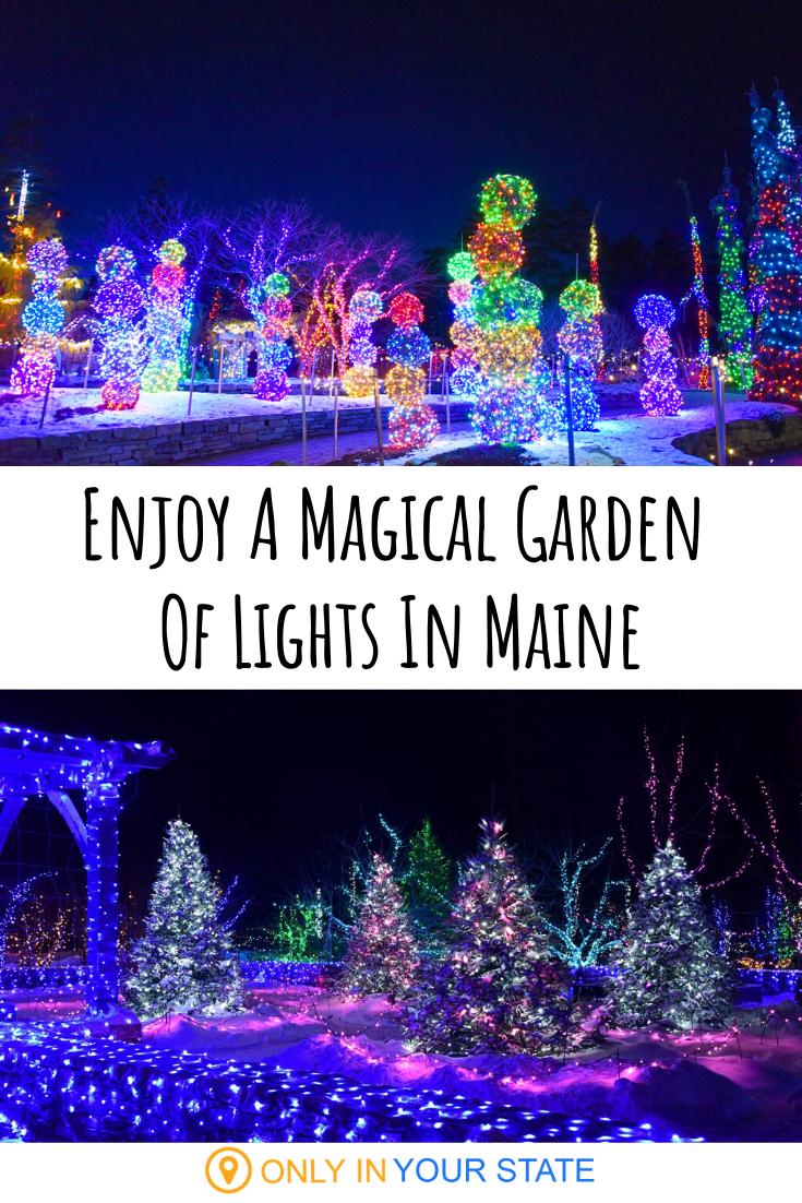 aa37f39fc6fdaf28abecfd3b2dca56c0 - Hidden Lake Gardens Festival Of Lights