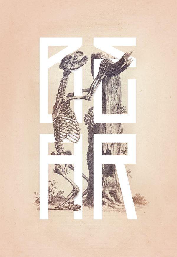 Bone - Anatomy Illustrated  Book by William Cheseldon