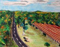 Cannon Field by Courtney Allen, via Behance