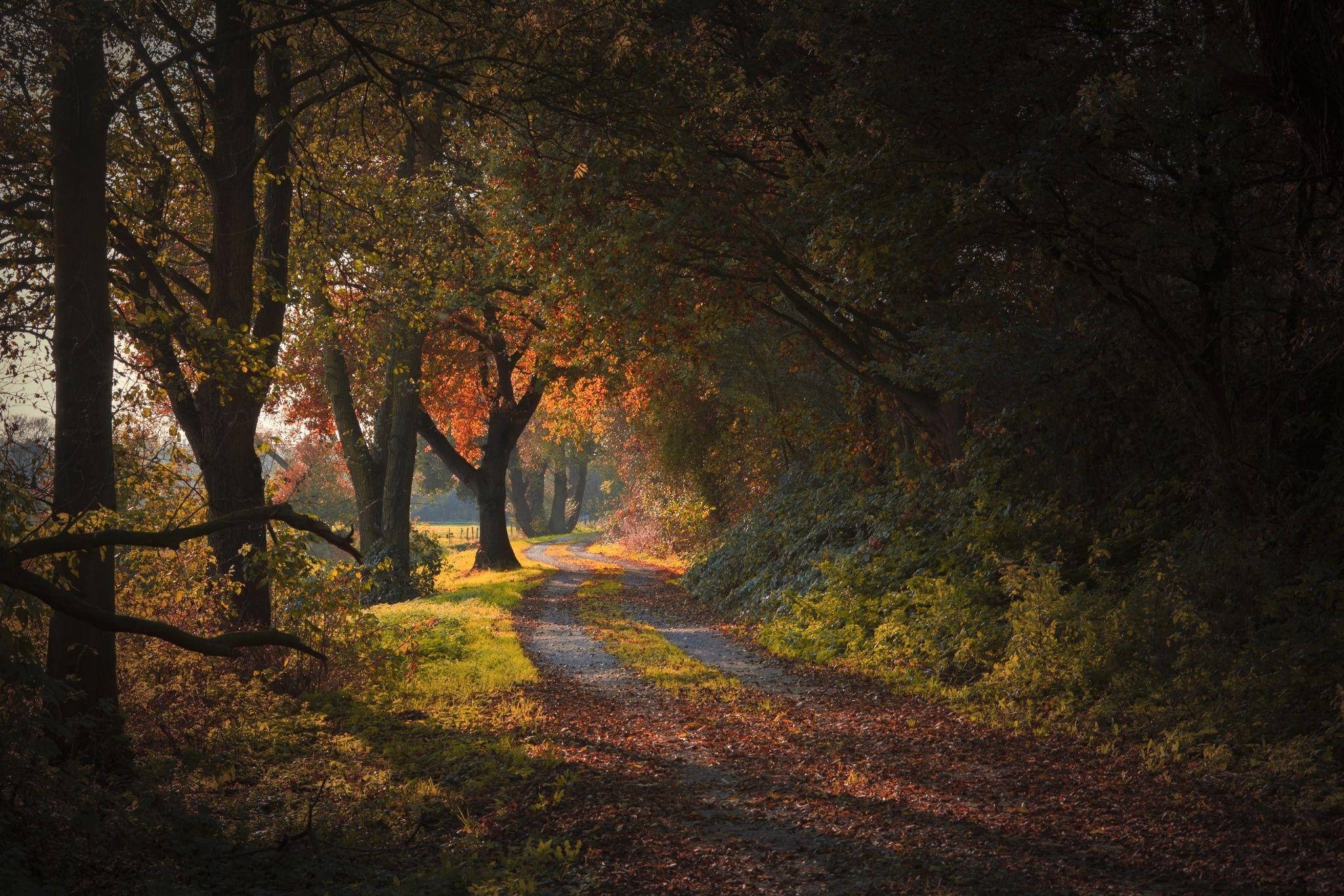 Path of Colors by Alex Kaßner on 500px