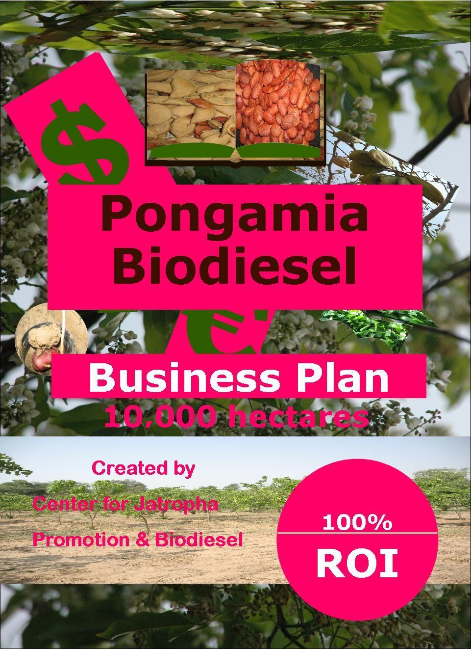moringa business plan 100 ha biodiesel business plans