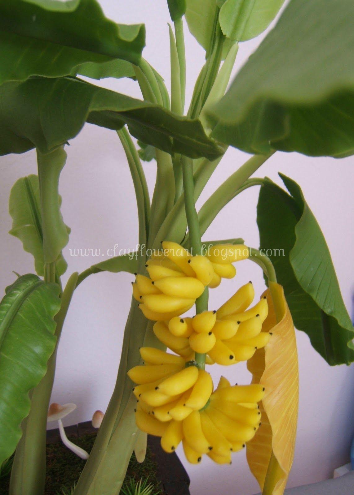 100pcs Rare Dwarf Banana Tree Seeds Mini Bonsai Garden Plant Exotic Fruits NY