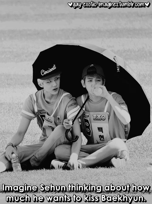 Sebaek   EXO   Exo, Kpop, Tumblr