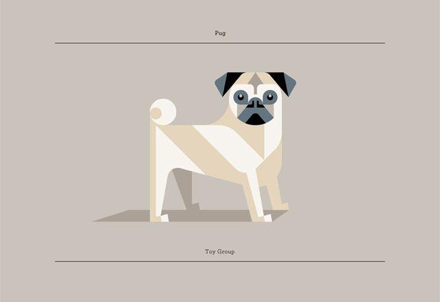 Minimalist Series of Geometric Dog Prints by Josh Brill