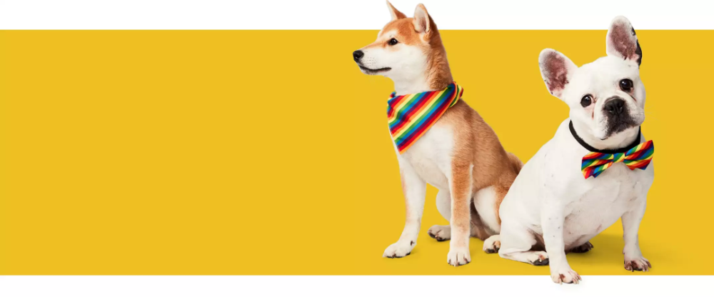 Shop Target For Dog Clothing Costumes Accessories You Will Love At Great Low Prices Free Shipping On Orders Of 35 Or Sam Dog Clothes Dog Costumes Costumes