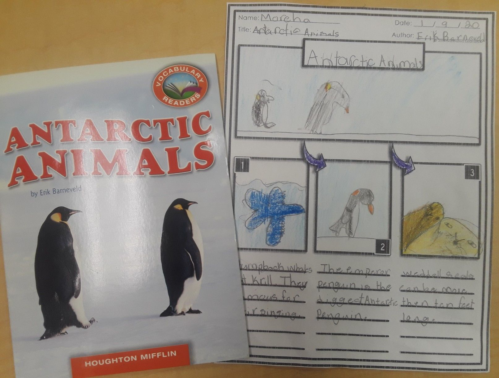 Pin By Motivated Learners On Ela Interactive Foldables 1st